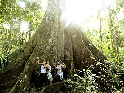Ecological Jungle Trips - Peru