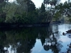 Econfina River