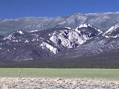 Ward Mountain In The Egan Range