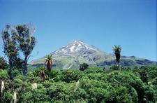 Egmont National Park - North Island - New Zealand
