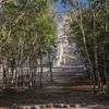 El Castillo In Coba - Surrounding Landscape