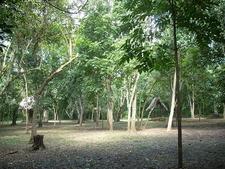 El Chal Plaza - Petén Department - Guatemala
