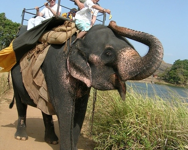 Family Holiday Package Offer Sri Lanka Photos