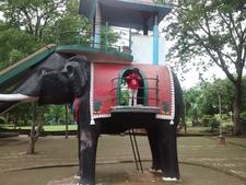 Elephant In Garden