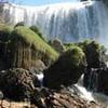 Elefante - Voi Cachoeira