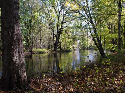 Elkhart River