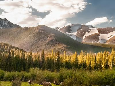 Elk Mountain - Colorado