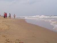Beach Edward Elliot