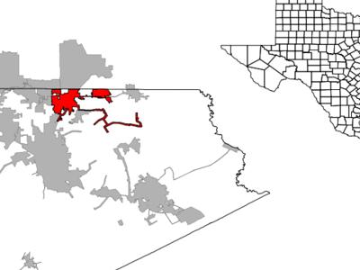 Ellis  County  Red Oak