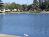 Ellis Lake