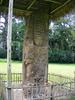 El Zotz Sculpture - Petén Department - Guatemala