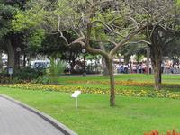 Parque 7 de Junio