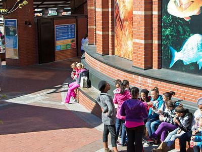 Entrance To The Two Oceans Aquarium