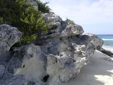 Eolianite Long Island