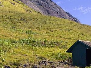 Eravikulam Naturaleza Campamentos
