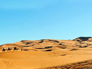 Morocco Desert Tour Package Photos