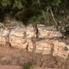 Escalante Petrified Forest State Park