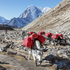 Everest Near Lobuche Village In Nepal