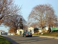 Cementerio de los árboles de hoja perenne