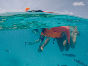 Maldives Snorkeling Adventure - Group Tour