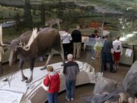 Denali Visitor Center