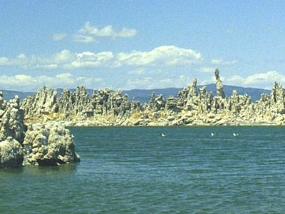 Exposed Tufa Towers In Mono Lake