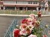 Administrative Building Of Tezpur University