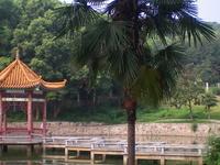 Universidad China de Geociencias