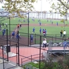 The Park Has Numerous Athletic Facilities