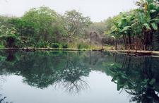 Sulfur Lagoon Aguablanca In Machalilla National Park