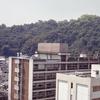 Ehime University