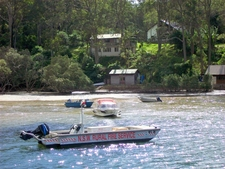 Low Tide At Elvina Bay