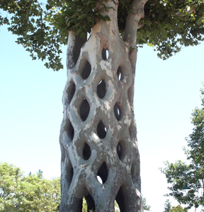 Basket Tree