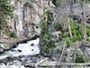 Fairy Creek Trail - Yellowstone - USA