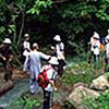 Fada Stream - Suoi Tien