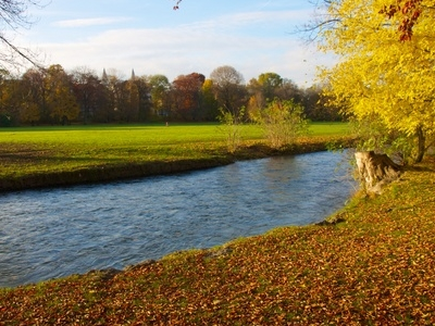 Fall Foliage English Garden