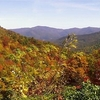 Fall In The Chattahoochee National Forest