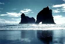 Farewell Spit Rock