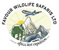 Favour Wildlife Safaris