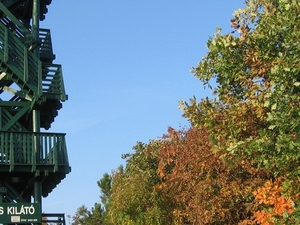 Festetics Viewing Tower