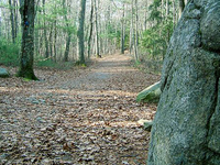 F. Gilbert Hills State Forest
