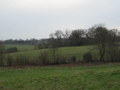 Fields In Scadbury Park