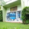 Fiji Museo
