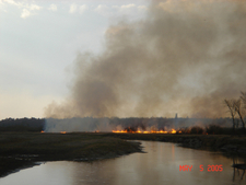 Fire In Chippewa National Forest