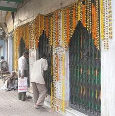 Firinghi Kalibari