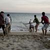 Fishermen In Sesimbra