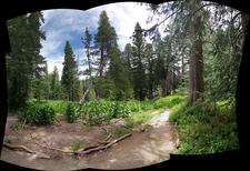 Fisher Trail 230 - Tonto National Forest - Arizona - USA