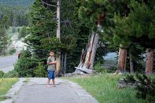 FishingBridge Visitor Center - Yellowstone - Wyoming - USA