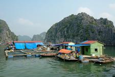Fishing Village In HaLong Bay