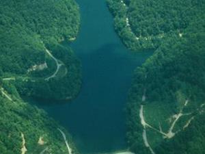 Estanque de peces del lago